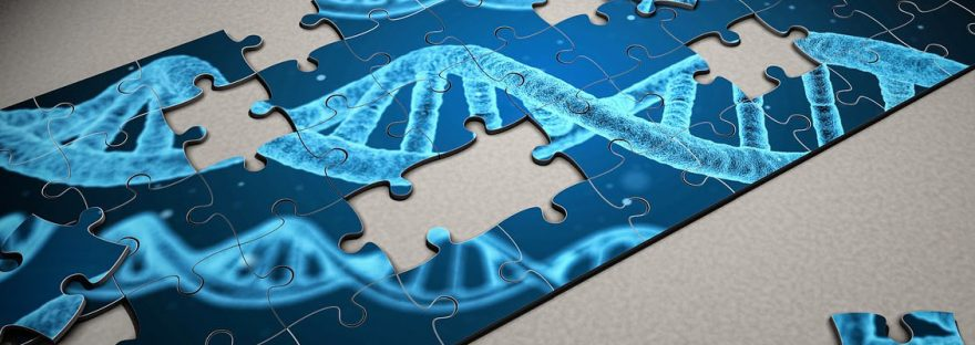 dna-puzzle-banner